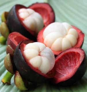 manfaat kulit buah manggis